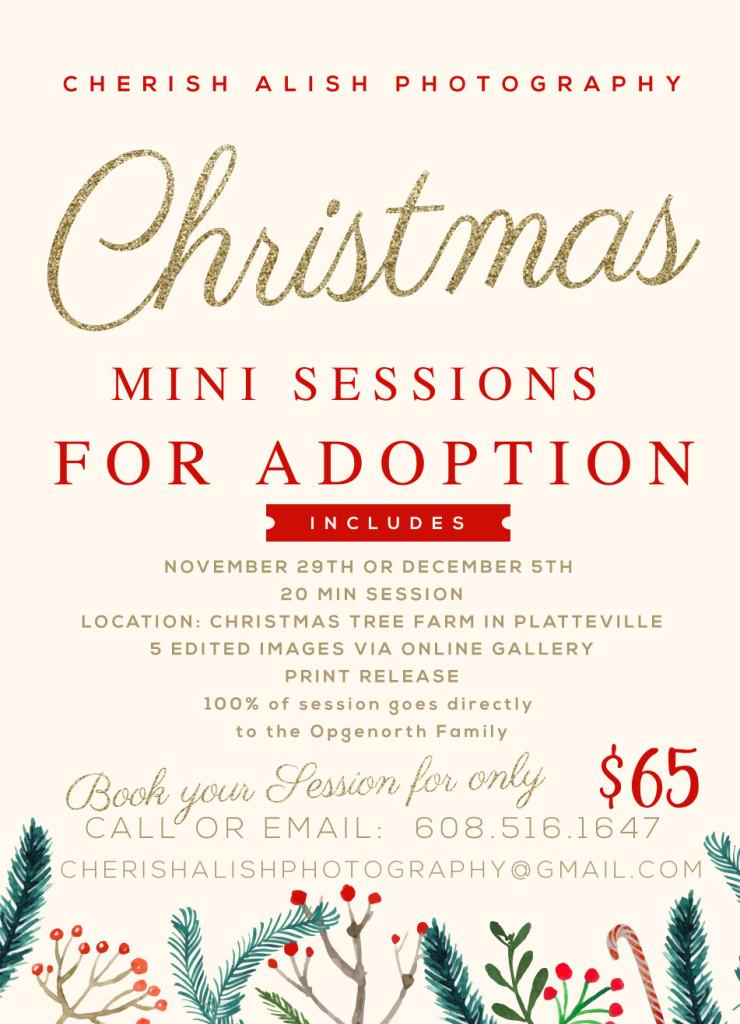 ADOPTION CHRISTMAS SESSION